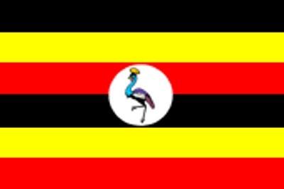 Uganda ca. 100 cm x 150 cm