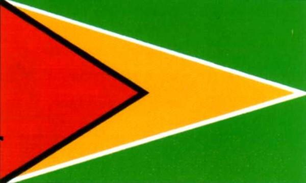 Guyana ca. 100 cm x 150 cm