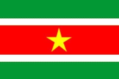 Surinam ca. 100 cm x 150 cm