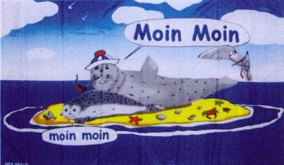 """Seehund 6 Paar auf Sandbank """"Moin Moin"""""""