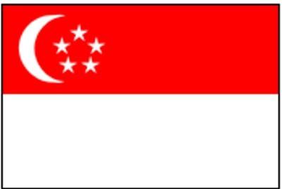 Singapur N ca. 100 cm x 150 cm