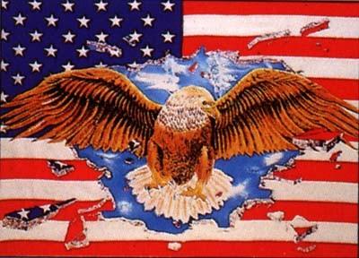 USA mit durchbrechendem Adler (Größe ca. 60 cm x 90 cm)