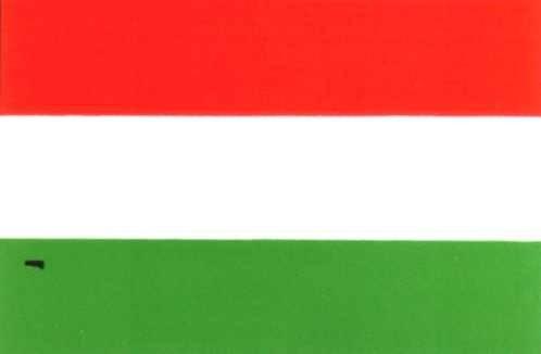 Ungarn Gastlandflagge