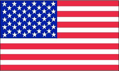 USA Gastlandflagge