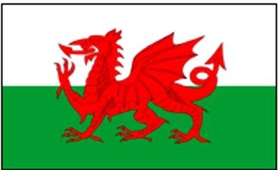 Wales ca. 100 cm x 150 cm